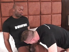 Champ and Blue sizzle in this hot and sweaty fuck scene