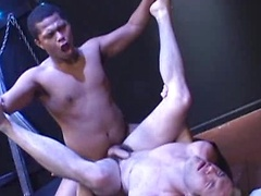 Michael James and Caleb Black go at it like wild pigs in this new barebacking video. Kissing madly at the start and ...